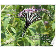 He will regard the prayer Poster