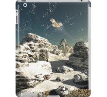 Winter Overflight iPad Case/Skin