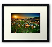 Sutro Baths San Francisco Framed Print