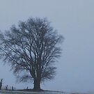 The Lone Tree in a Blizzard by barnsis