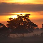 Sunrise of Oxley #2 by Jodie Bennett