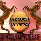 OWF CHALLENGE WINNER BANNER by plunder