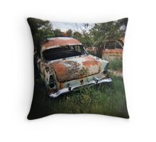 Car in the Home Paddock_1 Throw Pillow