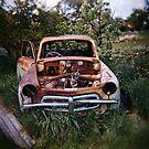 Car in the Home Paddock_2 by Steve Lovegrove