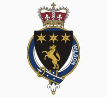 Coat of arms (family crest) for last-name or surname Wilson (England) . Heraldry banner for your name. Kids Clothes