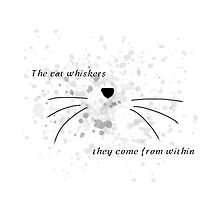 Dan & Phil |The cat whiskers- they come from within by phan trashno1