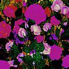 Rose Heart by Rebecca Tripp