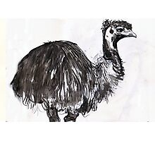 emu#2 Photographic Print