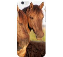 Three Of A Kind - Konik iPhone Case/Skin