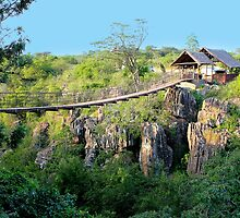 Suspension bridge at Rolfs place, near Masai Logde, Nairobi by Atanas Bozhikov Nasko