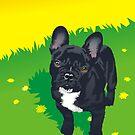 Small dogs, big personalities by Matt Mawson