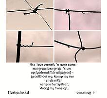 Herbedraad -druppels aan 'n heining by Rina Greeff