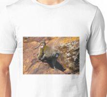 Baboon in Masai Lodge, KENYA Unisex T-Shirt