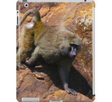 Baboon in Masai Lodge, KENYA iPad Case/Skin