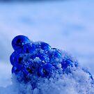 O' so blue by TriciaDanby