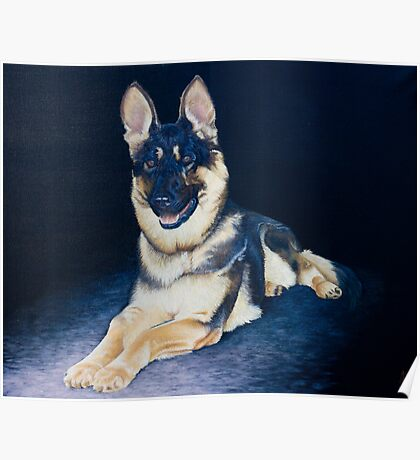 Shaka-Pet commission Poster