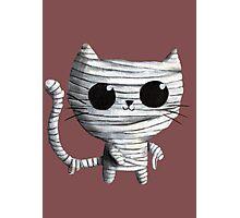 Cute Mummy Cat Photographic Print