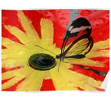 Glasswing on Red and Yellow Poster