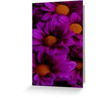 Bright Purple Flowers Greeting Card
