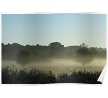 Two Trees in the Mist, Britford Poster
