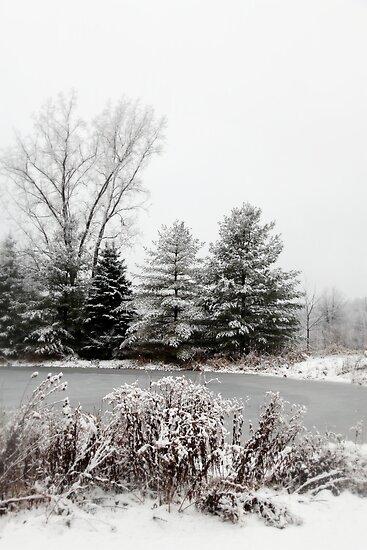 Winter Pond by Renee Blake