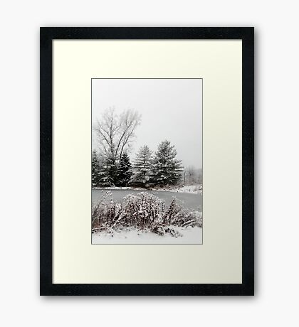 Winter Pond Framed Print