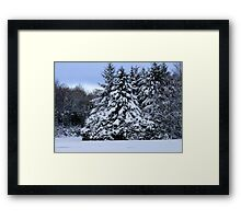 Christmas Tree On The Icy Lake Framed Print