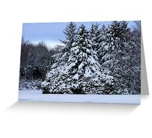 Christmas Tree On The Icy Lake Greeting Card