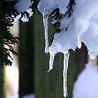 Icicles by Chris Goodwin