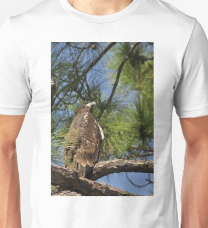 Bald Eagle Fledgling, As Is Unisex T-Shirt