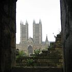 Window on the Cathedral, Lincoln by Ian Bracey