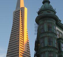 The Transamerica Pyramid, San Francisco by Ian Bracey