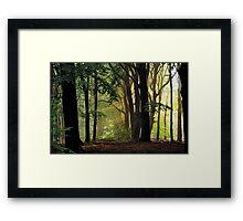 August morning magic Framed Print