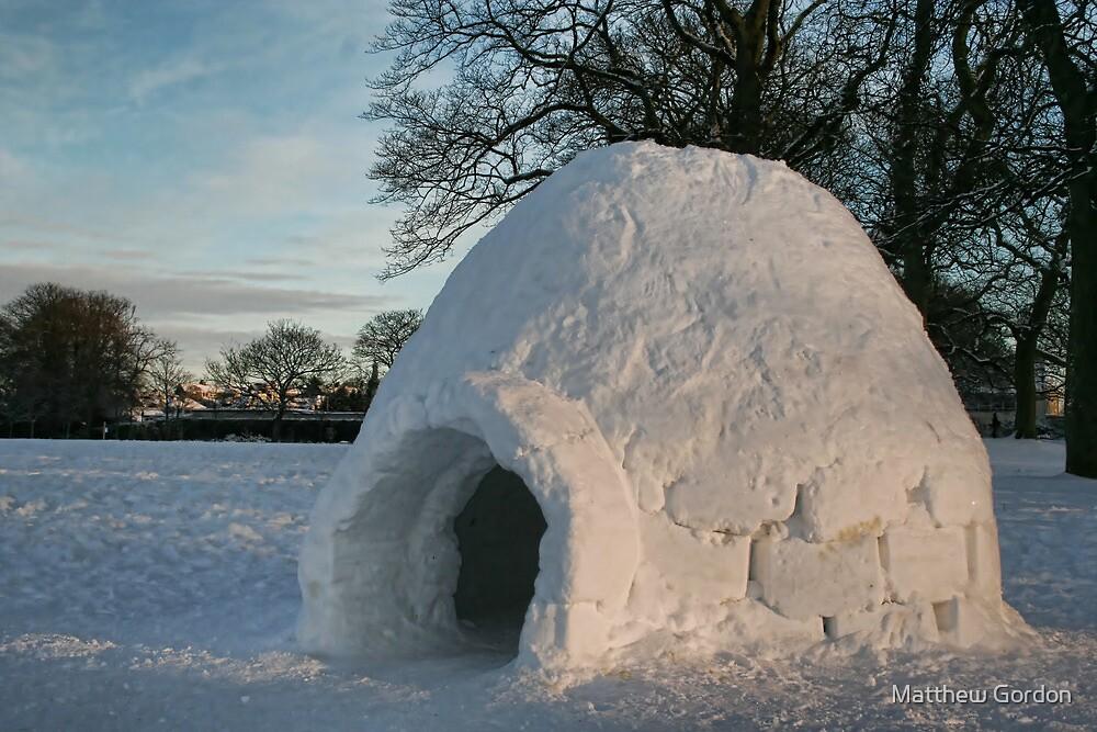 Igloo in Duthie Park, Aberdeen by Matthew Gordon
