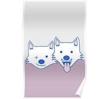 White dogs Poster