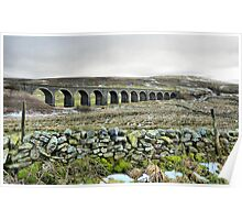 Dandry Mire Viaduct. Poster