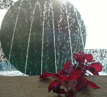 Fountain in the Sun by JaneMerson