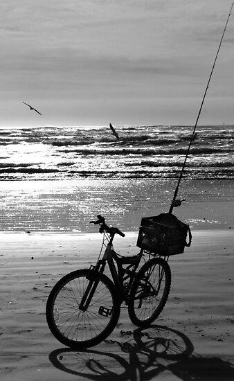 Bicycle on the Beach - Port Aransas, Texas by Debbie Pinard