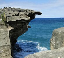 The sea and rocks by franceslewis