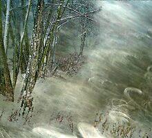 Snowstorm by Carolann23