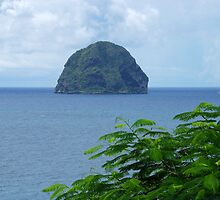 Rocher du Diamant - Martinique, F.W.I. by Olivia Son