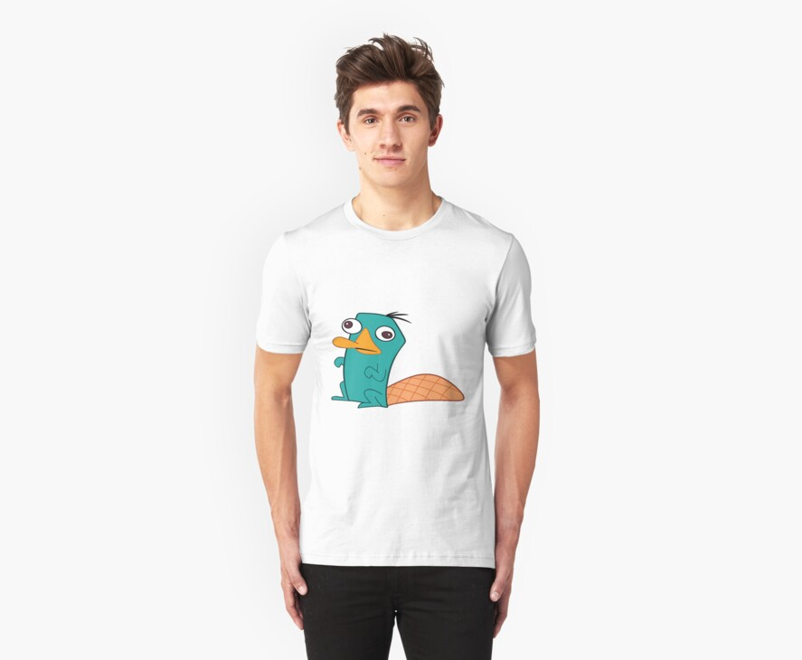 Perry The Platypus by Catherine O'Hagan