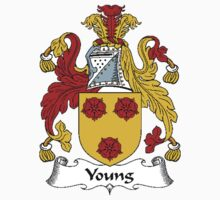 Coat of arms (family crest) for last-name or surname Young I . Heraldry banner for your name. by rita24