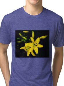 Yellow Lily Blooming, Lilie lilium Tri-blend T-Shirt