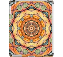 Mandala #30 iPad Case/Skin
