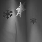 Seasonal Display - Art by SAngell