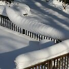 Snowsnake by Raider6569
