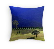 valley blues Throw Pillow