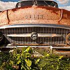 Rusty Buick by Wanda Dumas