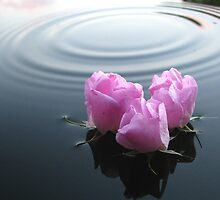 Floating in Peace by Earl Cockerham